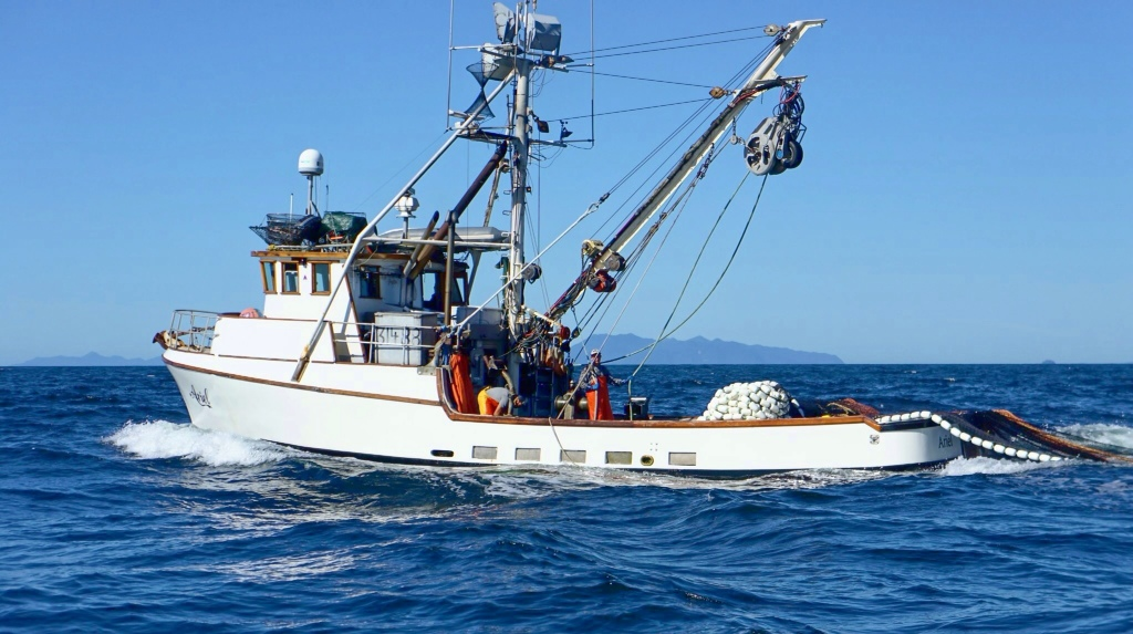 Commercial fishing photo of the day f v ariel for What is commercial fishing