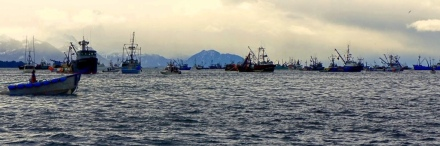Commercial Fishing Photo Of The Day | Sitka Herring 2012 | Boat Menagerie
