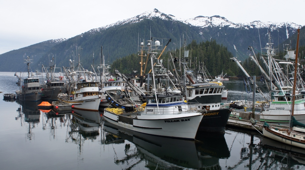 commercial fishing photo of the day