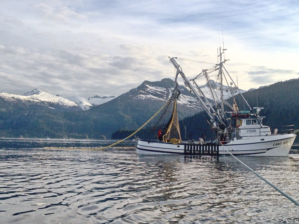 Commercial fishing photo of the day f v lake bay an for What is commercial fishing