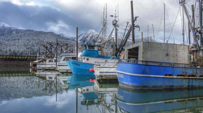Commercial Fishing Photo Of The Day | Harris Harbor 2013
