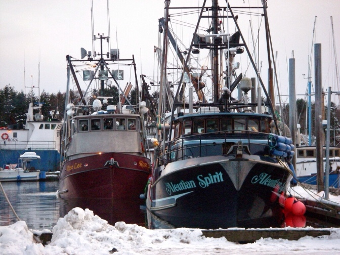 Commercial Fishing Photo Of The Day | Sitka Herring 2007