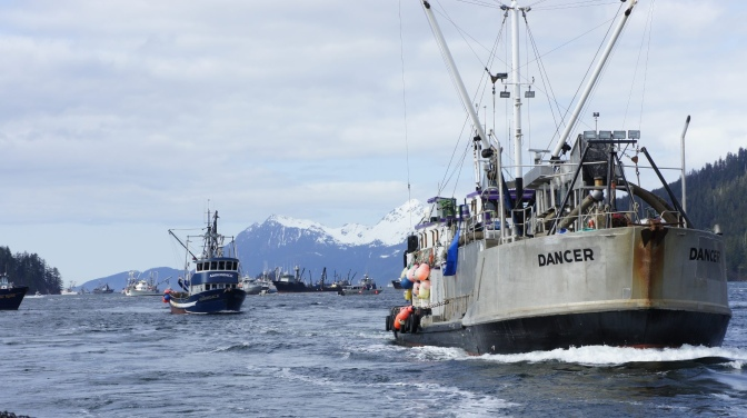 Commercial Fishing Photo Of The Day | F/V Dancer