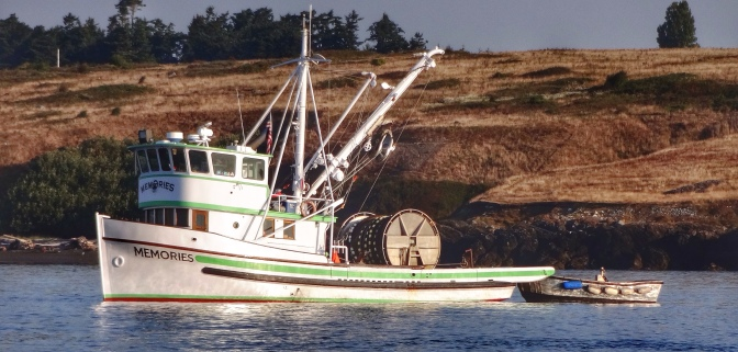 Commercial Fishing Photo Of The Day | F/V Memories | Salmon Banks 2014