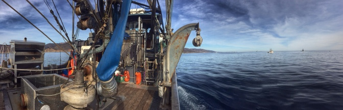 Commercial Fishing Photo Of The Day | F/V Aleutian Spirit | Squid 2014